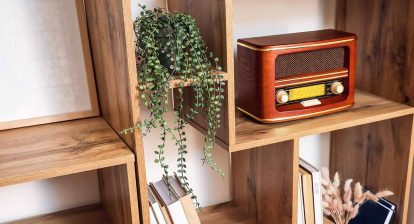 An old-time radio sits on a wood shelf next to a plant and some books