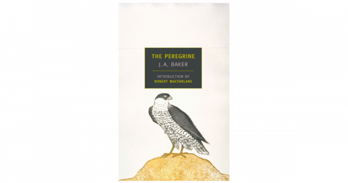 Book Cover: The Peregrine by J.A. Baker