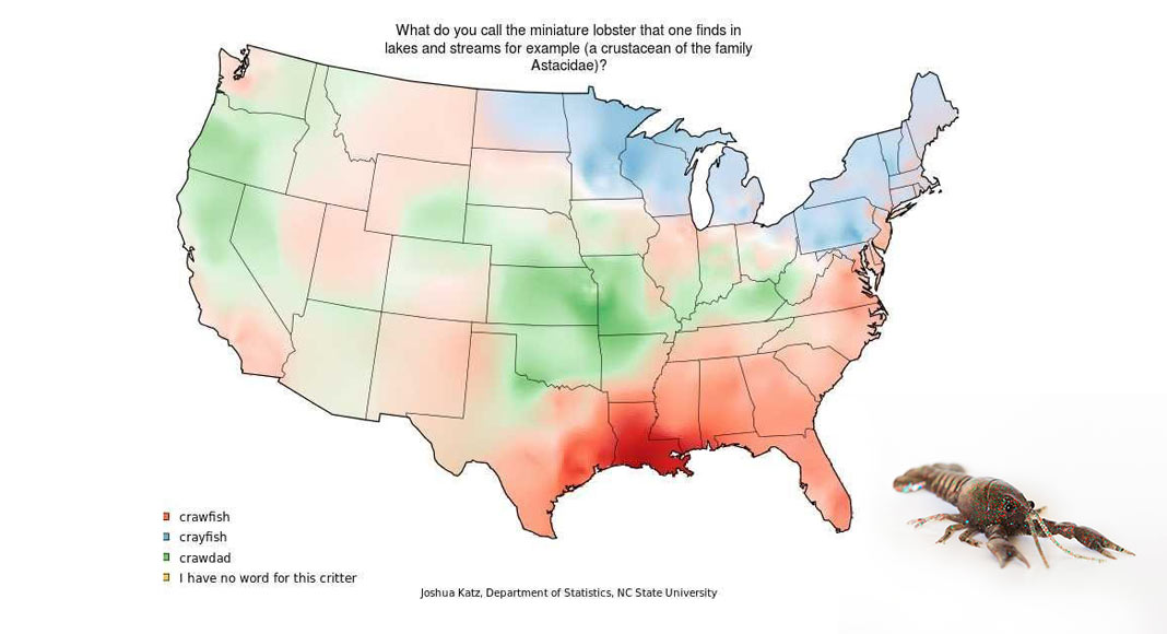A map of the United States shows how different populations refer to tiny lobsters as either crayfish, crawfish or crawdads