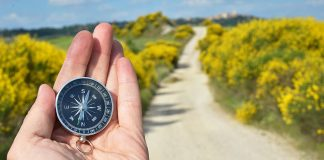A hand holds up a compass on the left side of the image. The background is blurry but shows a path through hills that have lots of yellow flowered shrubs.