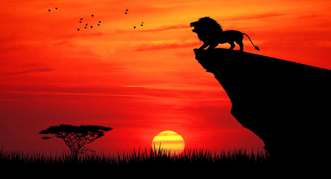 Voices In The Lion King Celebrity Voices Voicescom Blog