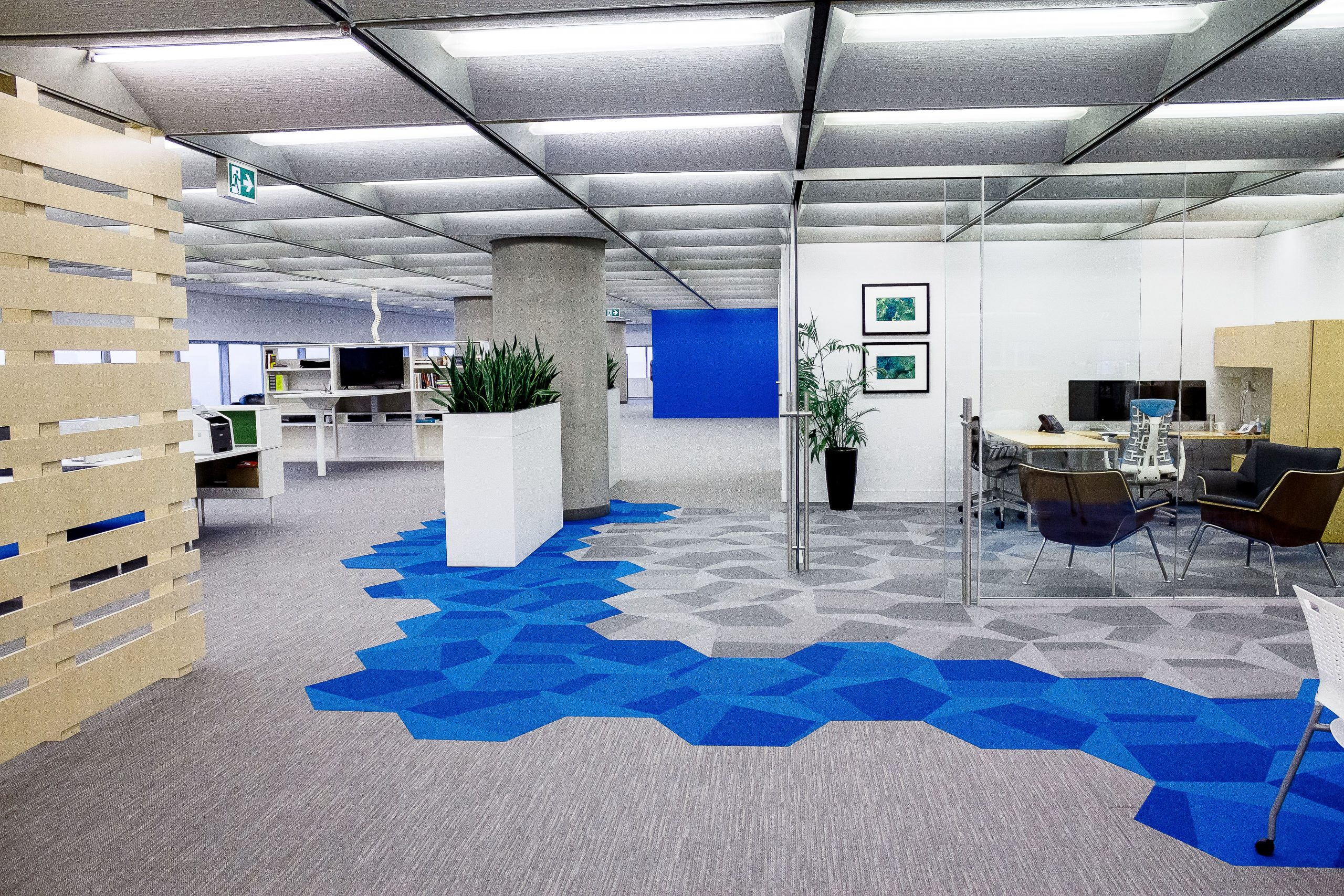 A shot of Voices's modern office, showing some greenery, glass office walls, and minimally patterned flooring.